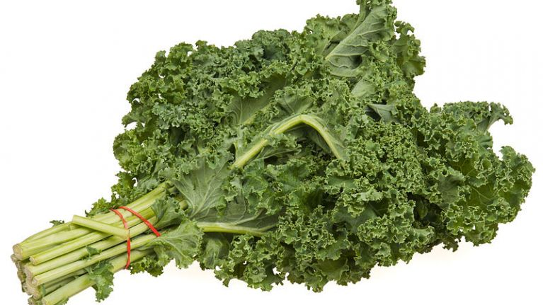 Food For Thought: A Short History of Kale