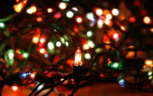 Turns out we've been hanging our Christmas lights wrong this whole time