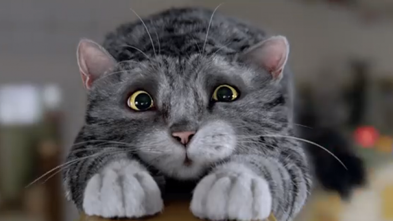 VIDEO: Mog The Cat Is The Star Of The Sainsbury's Christmas