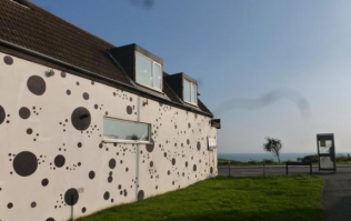 PICTURES: There's A House Dedicated To '101 Dalmatians' And We Want To Buy It Now