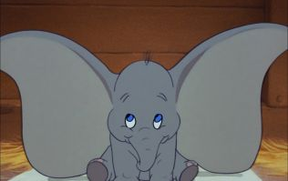 Penneys have released the most adorable Dumbo collection and we need it all