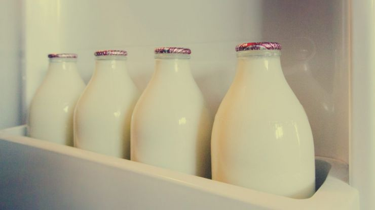 Turns out we've been storing our milk in the wrong place