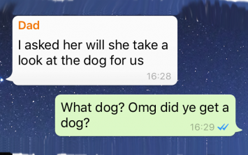 Irish Family WhatsApp Group - Leaving Cert Results, Olympics & Rose of Tralee