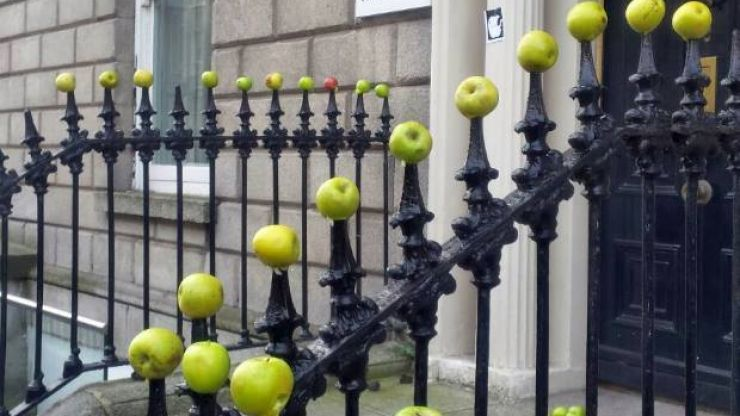 Someone put a load of apples outside Fine Gael offices