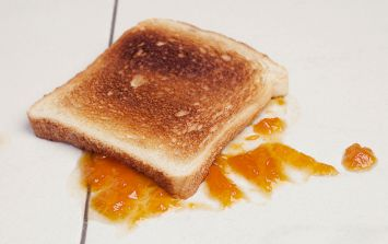Finally, we've found out if the 'five second rule' works