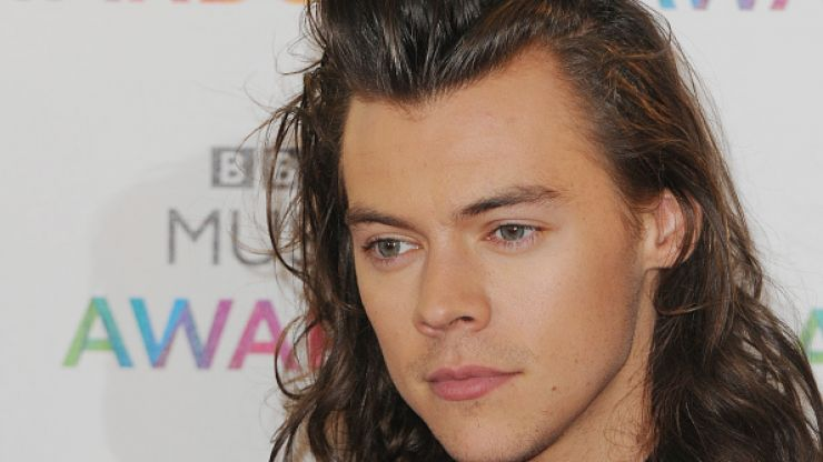 Looks like Harry Styles has a new girlfriend, and you'll probably recognise her