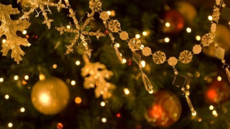 Aldi has the best Christmas tree on sale | Her.ie