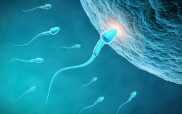 Scientists have created a new male contraceptive that makes men infertile for days