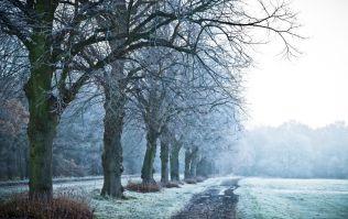 According to Met Eireann, temperatures are set to drop as low as -1C this week