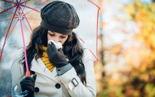 Always have a cold nose? It turns out this could be the reason why