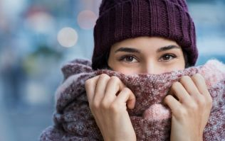 Have a cold nose? It turns out there may be a surprising reason why