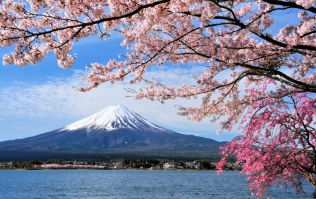 Japan voted the number one bucket-list destination in the world by travel bloggers