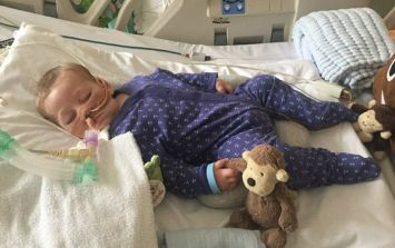 Yes we were all part of the mob... but Charlie Gard leaves behind no winners