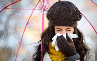 Sniffle season: 5 flu-fighting foods to help stay healthy in this chilly weather