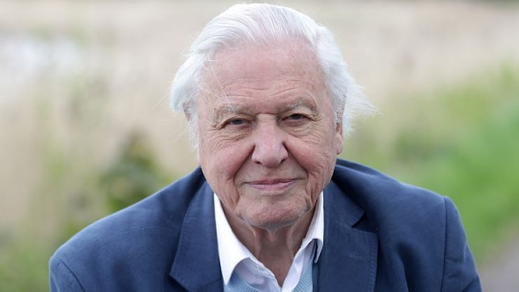 Sir David Attenborough has officially joined Instagram and we couldn't be happier
