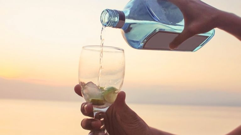Cancel your holiday: There's a GIN CRUISE about to set sail from Dorset