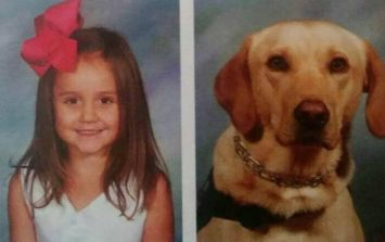 This little girl has an alert dog - and she insisted he feature in her yearbook