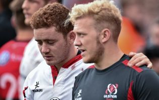 27K sign a petition asking that Jackson and Olding never play rugby again