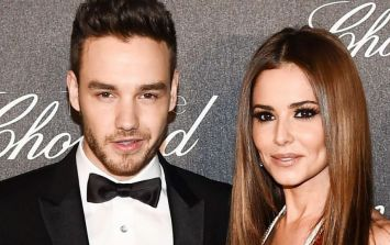 Liam Payne has moved on from Cheryl with Bella Hadid's doppelgänger
