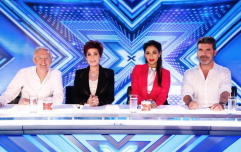 Here's who is being lined up to take over Louis Walsh's X Factor judging spot