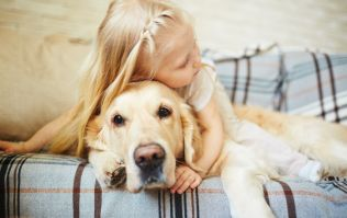 Growing up with a dog makes you less likely to suffer from anxiety