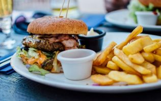 Experts says it's better to eat TWO burgers, rather than a burger and fries