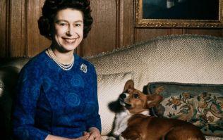 The Queen's last Corgi, Willow, has died in Windsor Castle