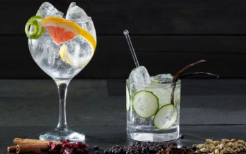 A huge gin fair is coming back to Dublin and we'll cheers to that