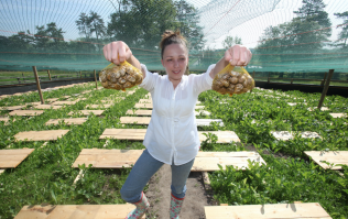 #MakeAFuss: The Carlow snail farmer who turned her hobby into a booming business