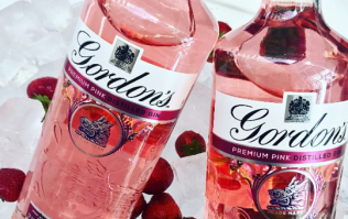 Gordon's pink gin now comes in a can and we absolutely welcome it