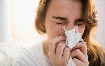 This will cure your hay fever, but it sounds PAINFUL
