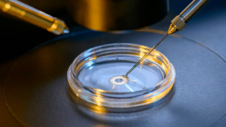 Thousands of Irish couples will no longer need to travel to Spain for IVF treatment
