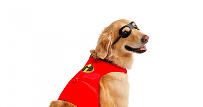 10cec0346 You can now get an Incredibles 2 costume for your doggo and yep, I'm  deceased | Her.ie