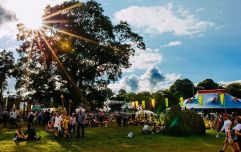 If you want to take some time out from music at Electric Picnic, these are our top picks