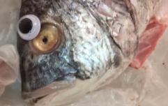 Shop in trouble for sticking googly eyes on fish to make them seem fresh