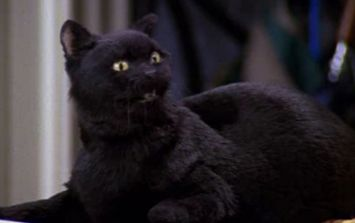 Netflix's Sabrina the Teenage Witch reboot almost made a huge change to Salem