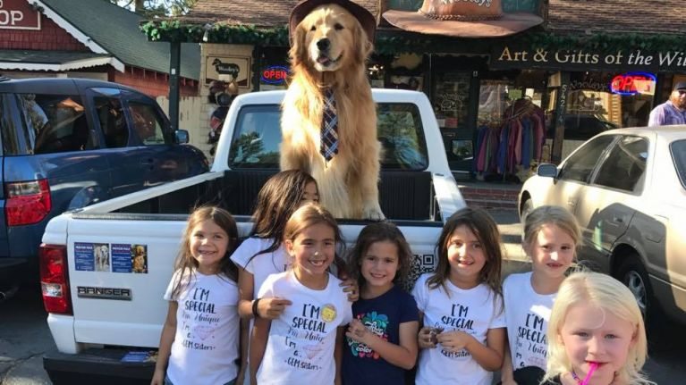 American town elects golden retriever as mayor because he's an extremely good boy