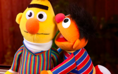 Iconic! A Sesame Street writer just revealed that Bert and Ernie are a gay couple