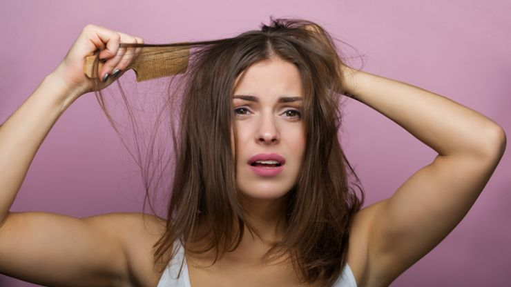 It turns out we may have been brushing our hair wrong the whole time