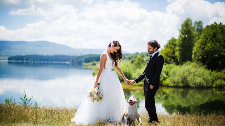 5 ways that you can include your pet in your wedding day