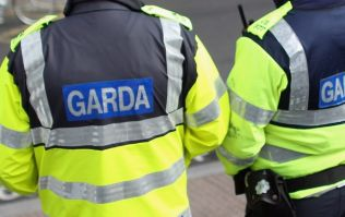 More than 215 litres of BEER has been seized by Gardaí this week