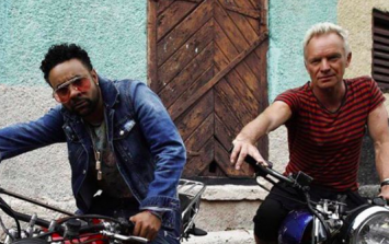 Sting and Shaggy are recording an album and we've so many questions