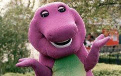 A live action Barney movie is in the works and we have so many questions