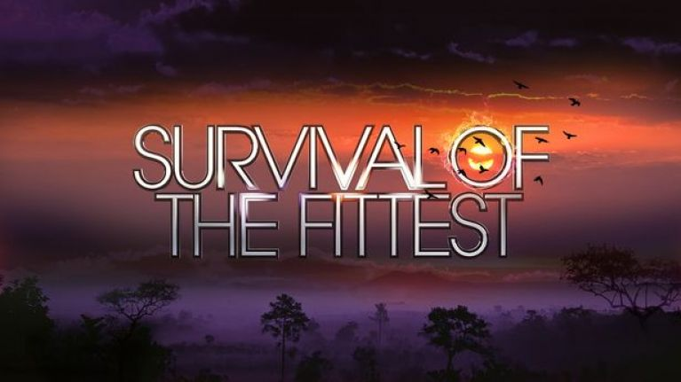 The newest contestant for Survival of the Fittest has been revealed