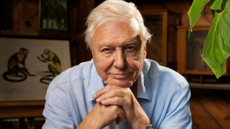 PSA: Today is officially the best Friday ever if you're a big David Attenborough fan