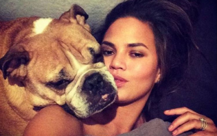 'I will love you forever, my boy' Chrissy Teigen shares heartbreak as her dog passes away