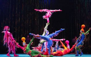 A Cirque du Soleil performer has died after tragically falling during show