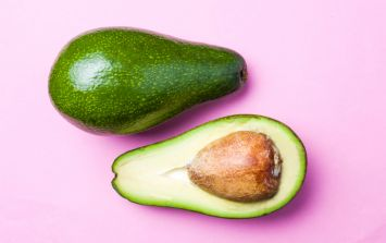 Oh my guac! A pop-up museum dedicated to avocados is coming
