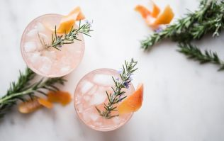 We've reached peak notions! Lidl has launched botanicals to garnish your G&T