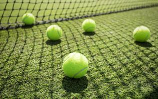 Nobody on Twitter can decide what colour tennis balls are